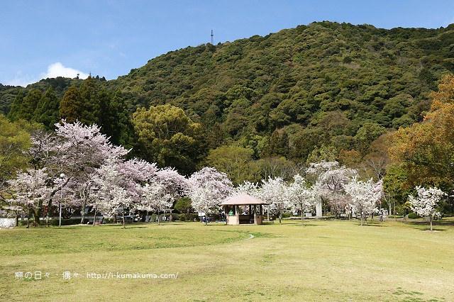 吉香公園-3553