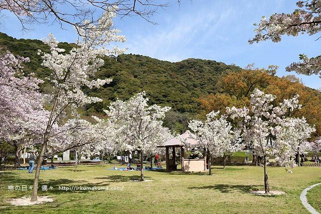 吉香公園-3601