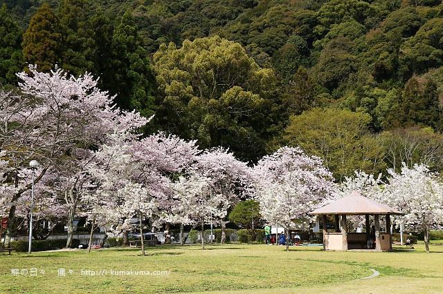 吉香公園-3555