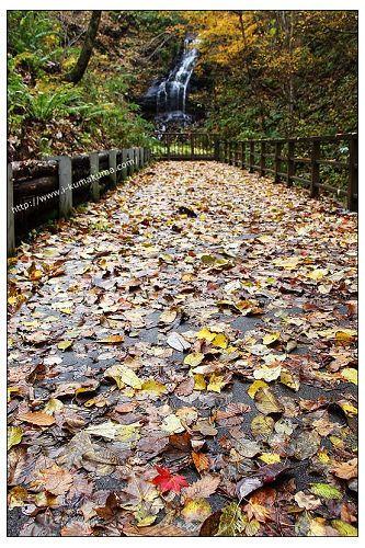 國營瀧野鈴蘭丘陵公園-1217