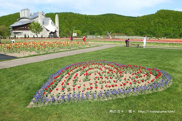 上湧別鬱金香公園--5394