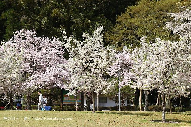 吉香公園-3536