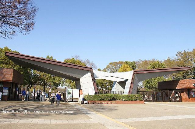 國營昭和紀念公園櫻花-7250