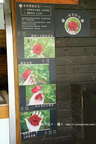 大花農場-9189