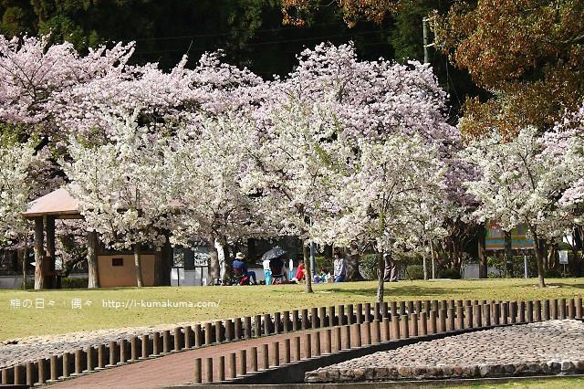 吉香公園-3509