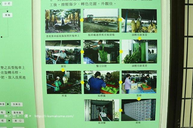 台灣香蕉科技園-0530
