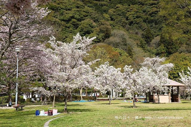 吉香公園-3585