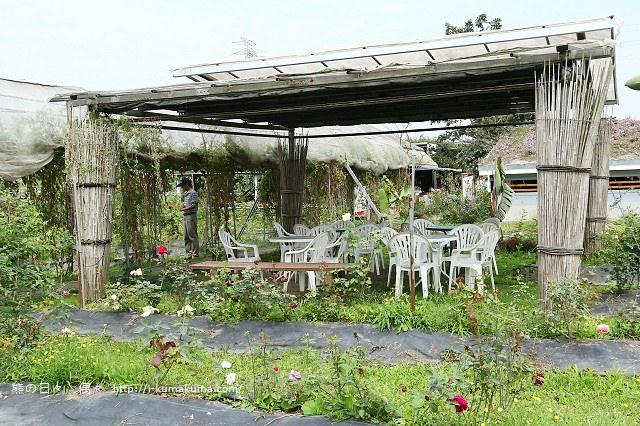 大花農場-9119