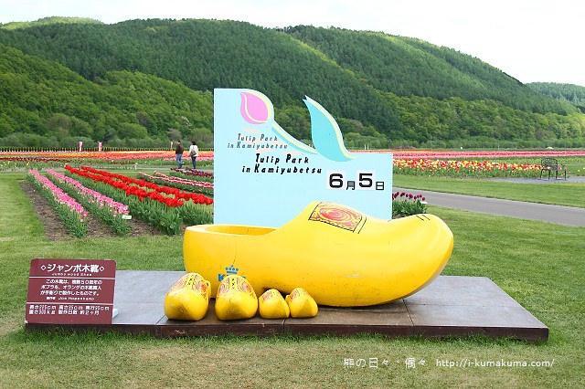 上湧別鬱金香公園--5095