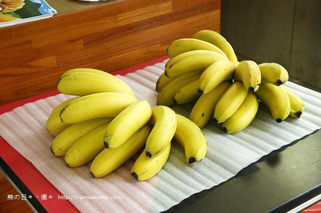 台灣香蕉科技園-0471