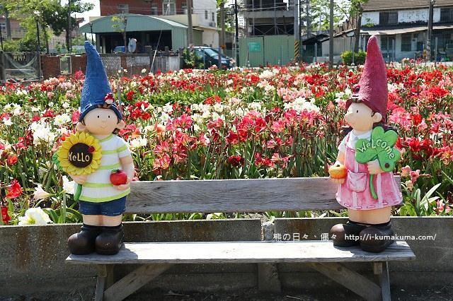 雲林四湖長春園藝孤挺花園-5534