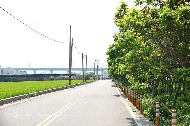 台中后里龍貓隧道-5906