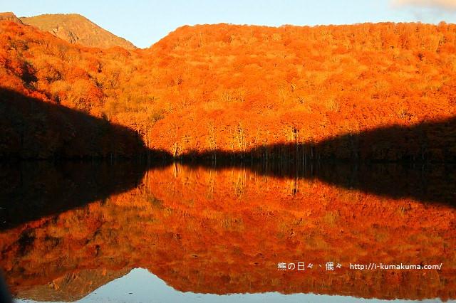 青森蔦沼紅葉-7076