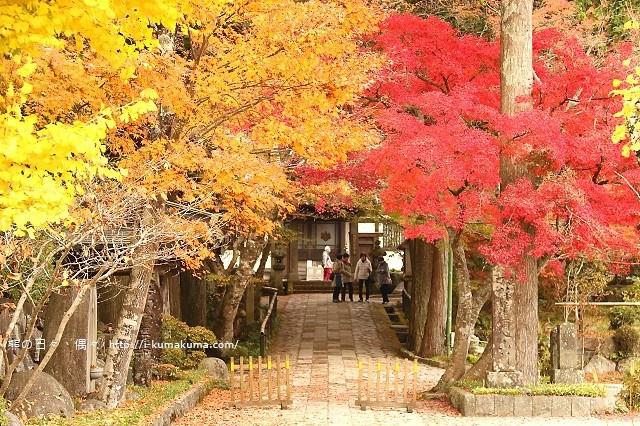箱根長安寺-A2155