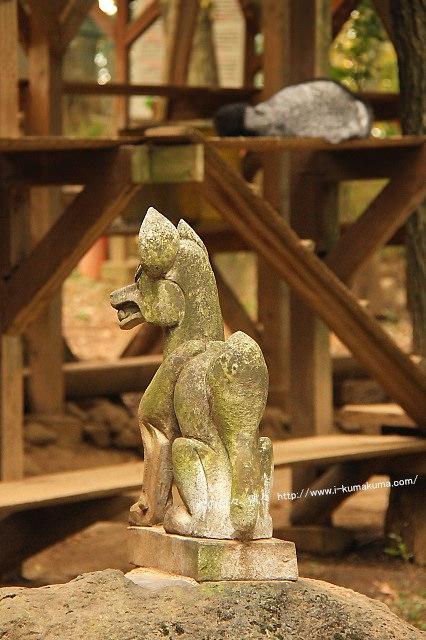 藏王狐狸村-IMG_0216