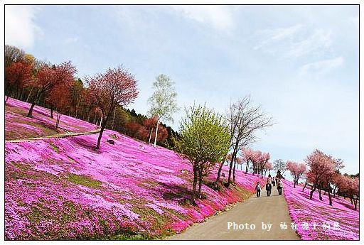 瀧上芝櫻公園-48