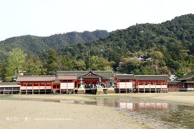 廣島嚴島神社-K24A4743