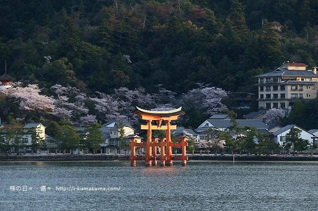 廣島嚴島神社-K24A5227