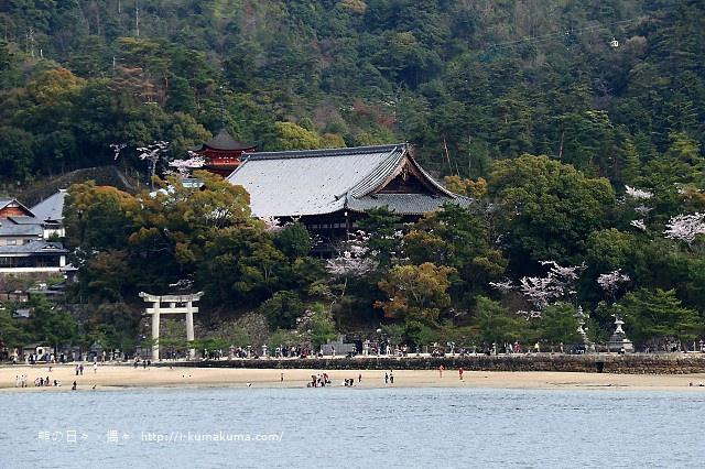 廣島嚴島神社-K24A4553