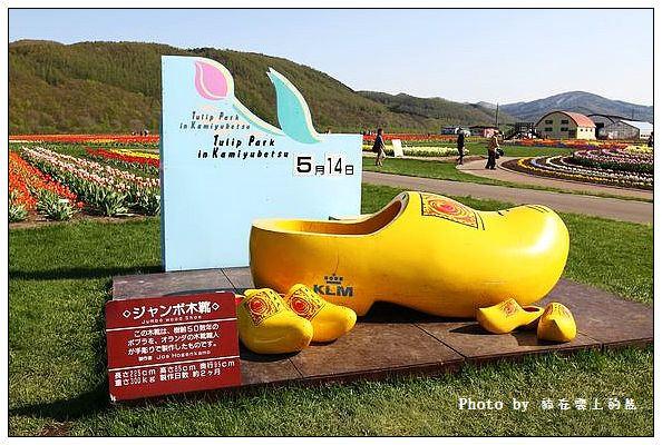 上湧別鬱金香公園-04