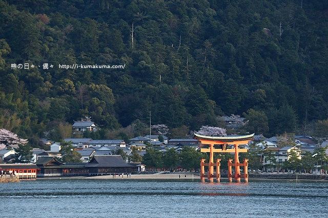 廣島嚴島神社-K24A5252