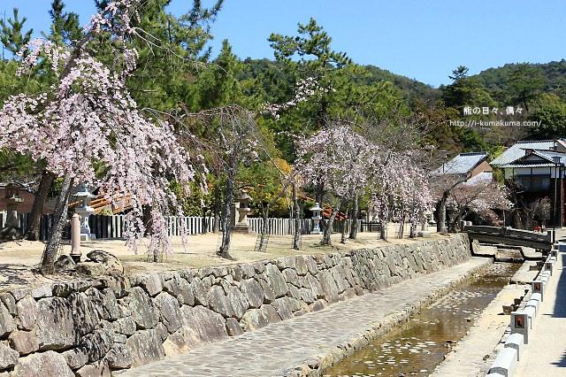 廣島嚴島神社-IMG_7236