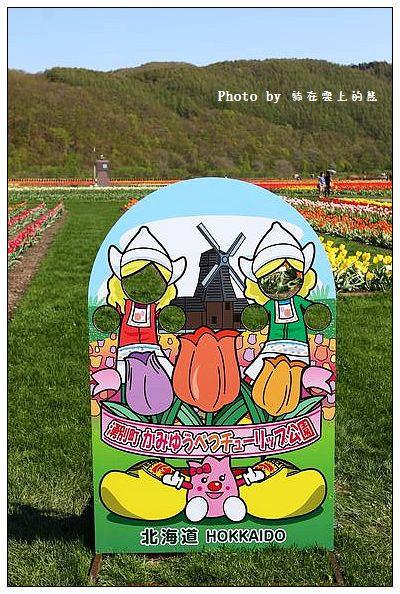 上湧別鬱金香公園-03