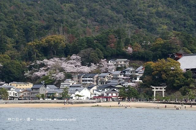 廣島嚴島神社-K24A4563