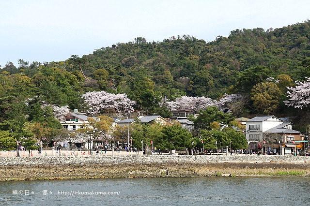 廣島嚴島神社-K24A4614