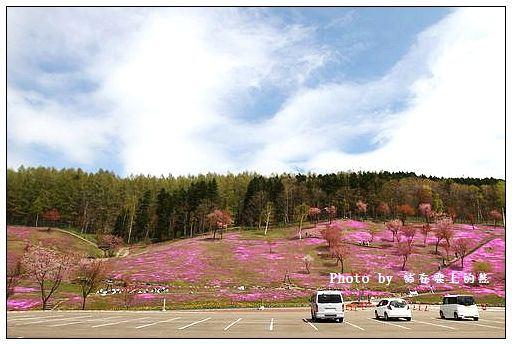 瀧上芝櫻公園-01