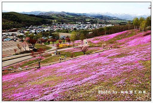 瀧上芝櫻公園-35
