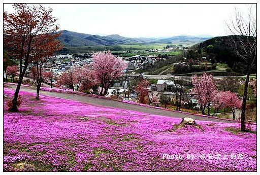 瀧上芝櫻公園-23