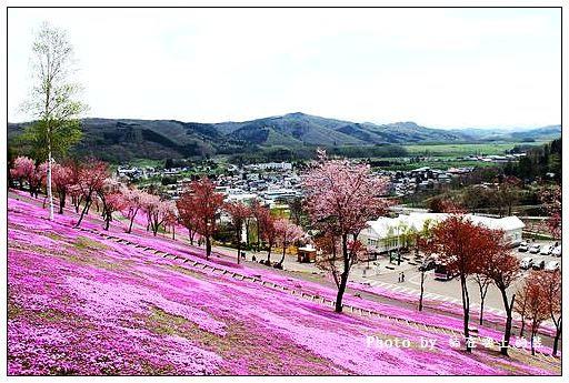 瀧上芝櫻公園-32