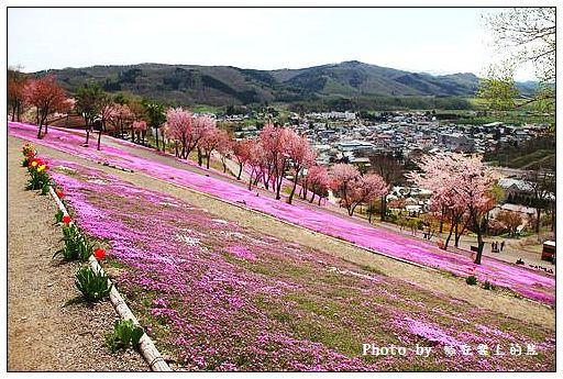 瀧上芝櫻公園-30